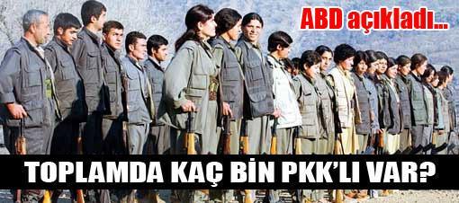 Toplam kaç bin PKK'lı var, ABD açıkladı