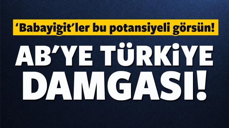 AB en fazla aracı Türkiye'den alıyor