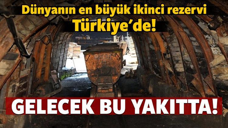 Dünyanın en büyük ikinci rezervi Türkiye'de! - Ekonomi Haberleri