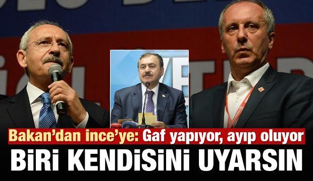 Bakan Eroğlu: İnce'yi biri uyarsın, gaf yapıyor!