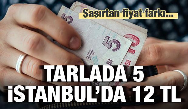 Şaşırtan fark: Tarlada 5 TL, İstanbul'da 12 TL
