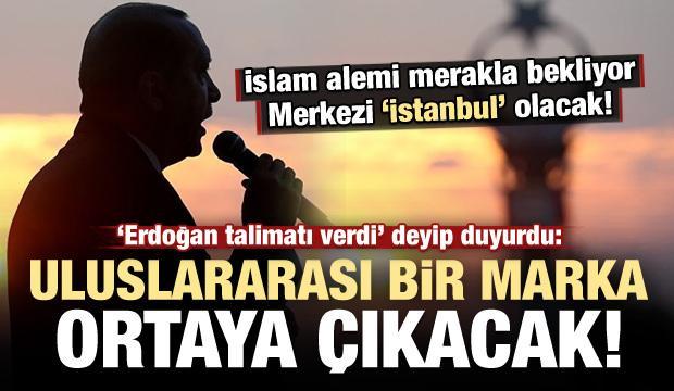 'Erdoğan talimatı verdi' deyip duyurdu! Kuruluyor...