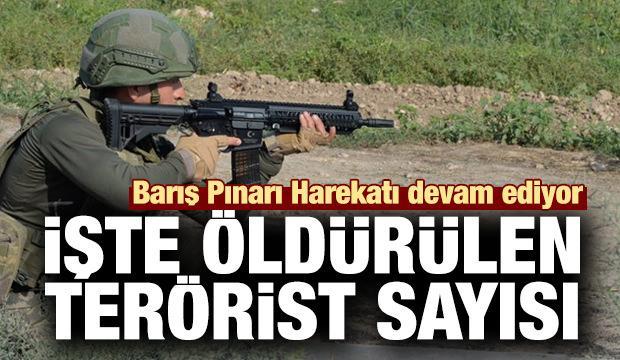 Barış Pınarı Harekatı devam ediyor... İşte öldürülen terörist sayısı