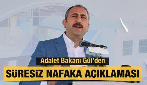 Abdülhamit Gül'den süresiz nafaka açıklaması