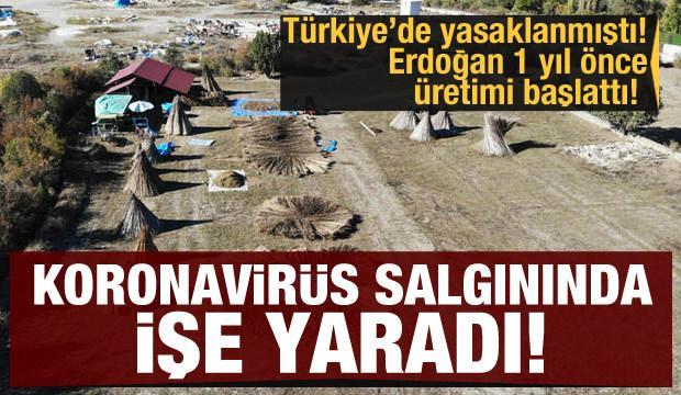 Yasaklanmıştı! Erdoğan 1 yıl önce üretimi başlattı! Koroanvirüs salgınında işe yaradı