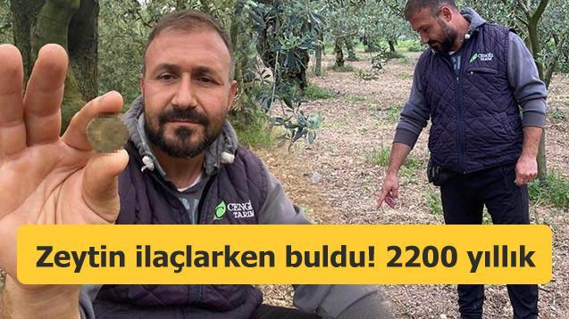 Zeytin ilaçlarken 2200 yıllık sikke buldu!