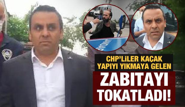 CHP'li meclis üyesi kaçak yapının yıkılmasına karşı çıktı, arkadaşı zabıtaya tokat attı!