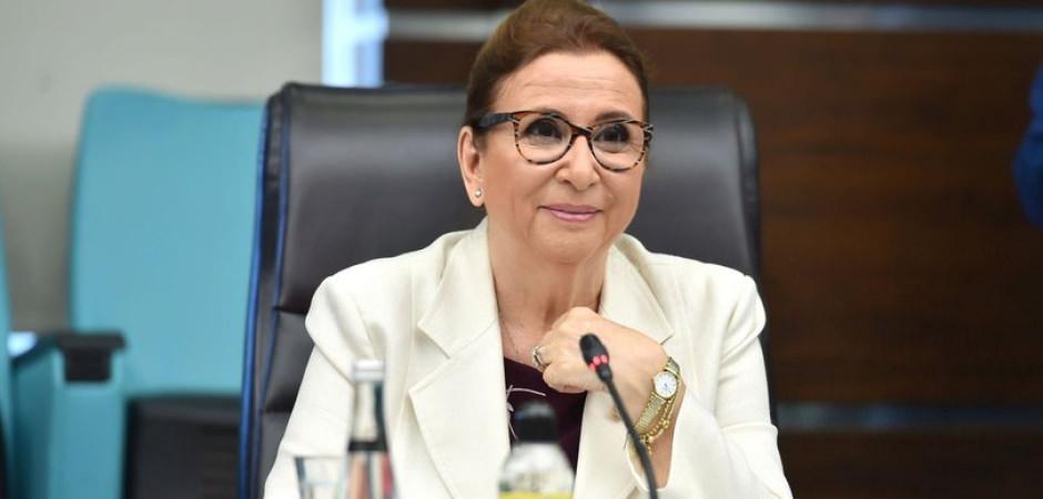 Bakan Pekcan'dan Gümrük Birliği Anlaşması açıklaması