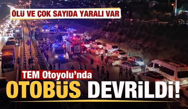 TEM'de yolcu otobüsü devrildi Ölü ve yaralılar var