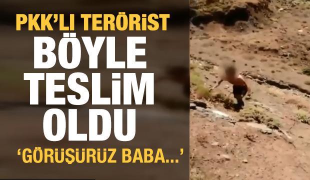 Aktütün'de PKK'lı bir terörist, Komandolarımıza teslim oldu