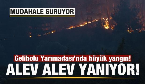 Gelibolu Yarımadası'nda büyük yangın! Müdahale sürüyor!