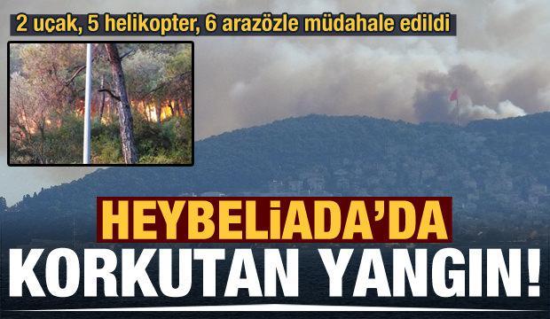 Heybeliada'da korkutan yangın! Soruşturma başlatıldı