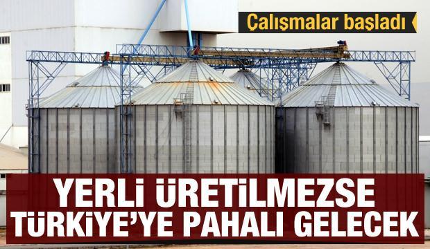 Yerli yem üretilmezse Türkiye'ye pahalıya gelecek