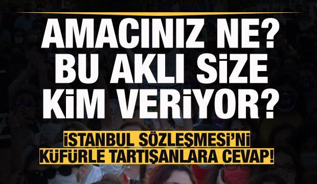 İstanbul Sözleşmesi'ni küfürle tartışanlara cevap! 9 yıl sonra sizin amacınız ne?