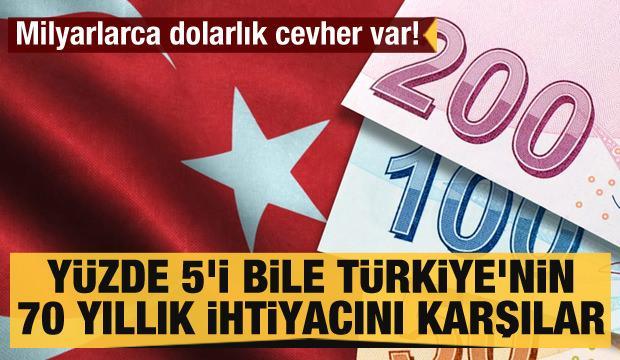 Milyarlarca dolarlık cevher var! Yüzde 5'i bile Türkiye'nin 70 yıllık ihtiyacını karşılar