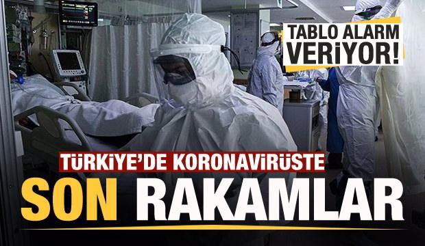 Son dakika haberi: 24 Eylül koronavirüs tablosu! Hasta, ölü sayısı ve son durum açıklandı