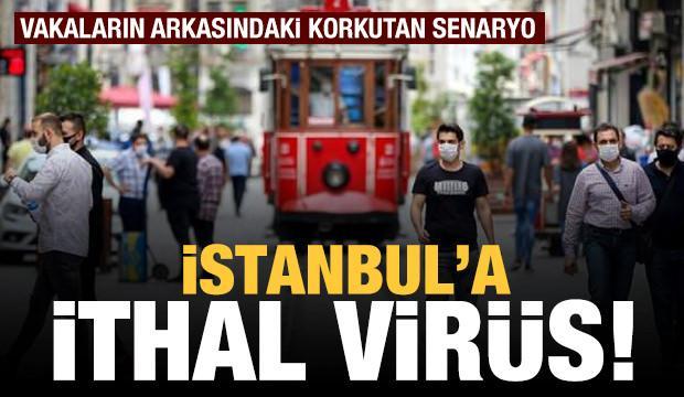 İstanbul'a ithal virüs! Vakaların arkasındaki korkutan senaryo