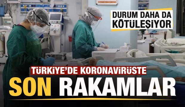 Son dakika haberi: 21 Kasım koronavirüs tablosu! Hasta, ölü sayısı ve son durum açıklandı