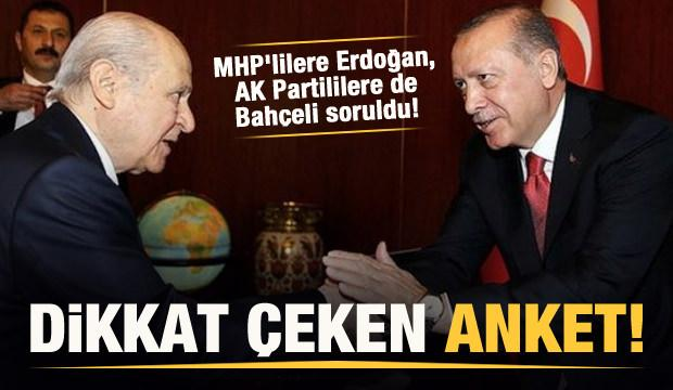Dikkat çeken anket! MHP'lilere Erdoğan'ı, AK Partililere de Bahçeli'yi sordular