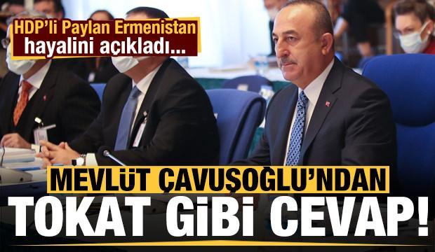 HDP'li Paylan'ın Ermenistan hayali sonrası Çavuşoğlu'ndan tokat gibi cevap!