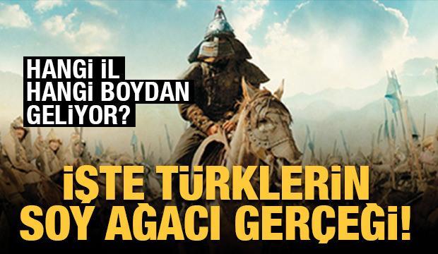 İşte Türklerin soy ağacı gerçeği! Hangi il hangi boydan geliyor?
