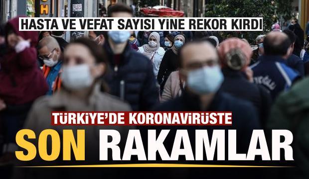 Son dakika haberi: 23 Kasım koronavirüs tablosu! Hasta, ölü sayısı ve son durum açıklandı