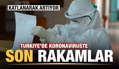 Son dakika haberi: 24 Kasım koronavirüs tablosu! Hasta, ölü sayısı ve son durum açıklandı
