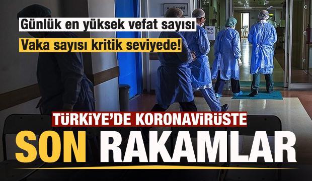 Son dakika haberi: 29 Kasım koronavirüs tablosu! Vaka, Hasta, ölü sayısı ve son durum açıklandı