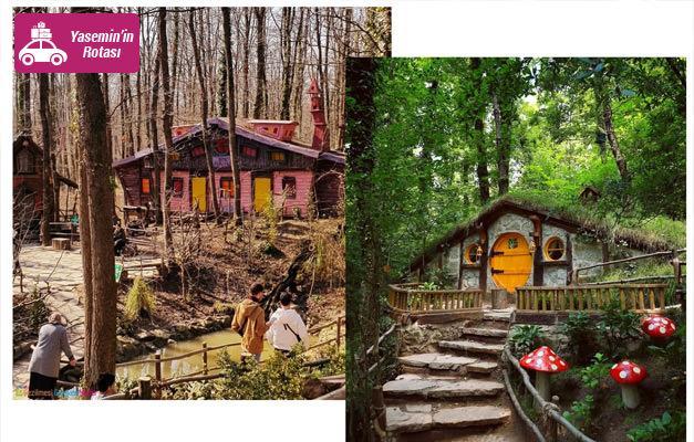 Avrupa'nın en büyük doğal yaşam parkı Ormanya