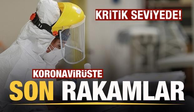 Son dakika: 12 Şubat koronavirüs tablosu! Vaka, Hasta, ölü sayısı ve son durum açıklandı