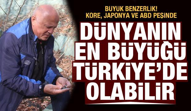 Dünyanın en büyüğü Türkiye'de olabilir! Bor madeni ile arasında benzerlik var