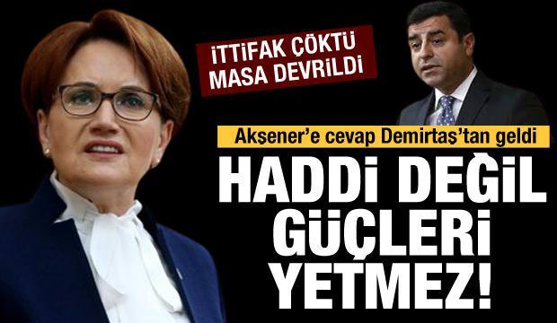 Demirtaş'tan  Akşener'e cevap:  Bize ayar vermek hadleri değildir!