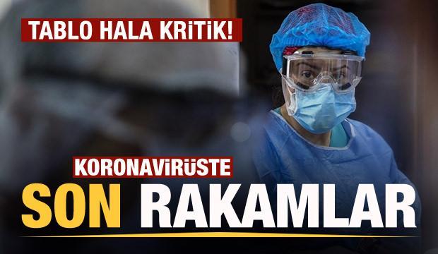Son dakika: 11 Nisan koronavirüs tablosu! Vaka, Hasta, ölü sayısı ve son durum açıklandı