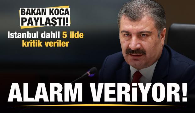 Bakan Koca paylaştı! İstanbul dahil 5 ilde kritik veriler! Alarm veriyor
