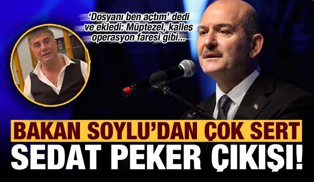 Son dakika: Bakan Soylu'dan Sedat Peker'e: Müptezel operasyon elemanı, fare gibi...
