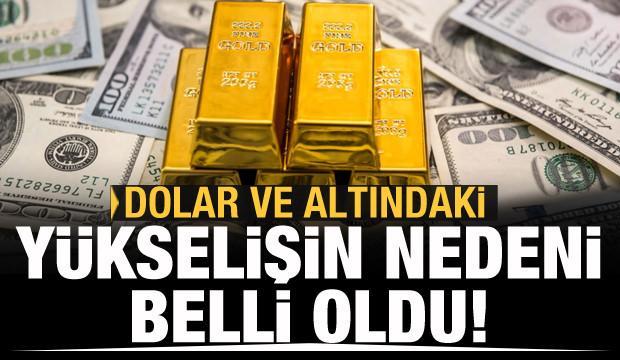 Dolar ve altındaki yükselişin nedeni belli oldu
