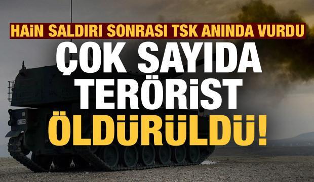 Son dakika: TSK'nın cezalandırma atışlarında çok sayıda terörist öldürüldü!