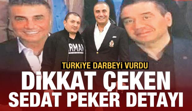 Türkiye darbeyi vurdu! Dikkat çeken Sedat Peker detayı