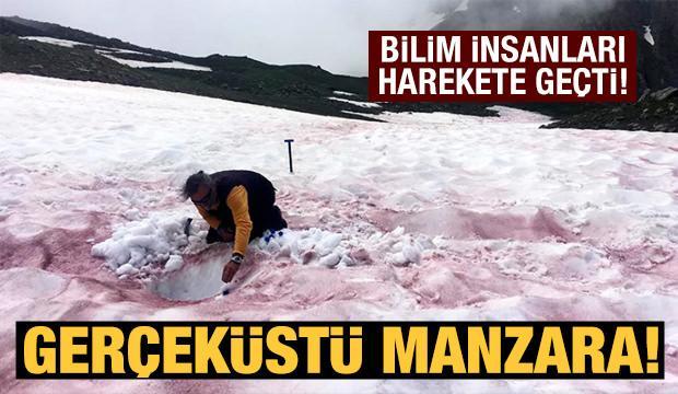 Alp Dağları'ndaki gerçeküstü manzara bilim insanlarını harekete geçirdi!