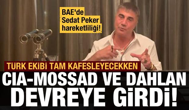BAE'de Peker paniği! Türk ekip tam enseleyecekken, CIA, MOSSAD ve Dahlan devreye girdi