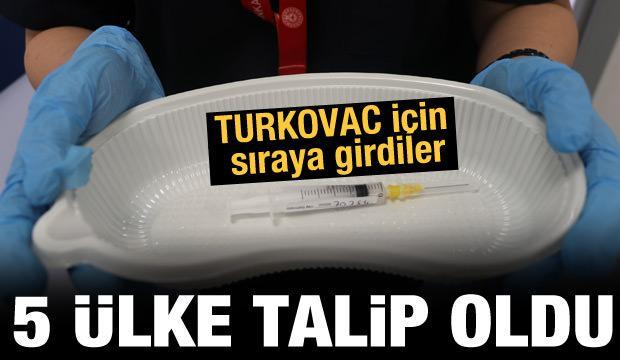 Turkovac aşısına 5 ülke talip oldu