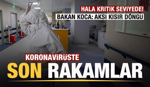 Son dakika: 21 Temmuz koronavirüs tablosu! Vaka, Hasta, ölü sayısı ve son durum açıklandı