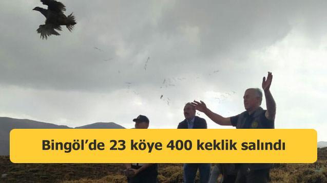 Bingöl'de 23 köye 400 keklik salındı
