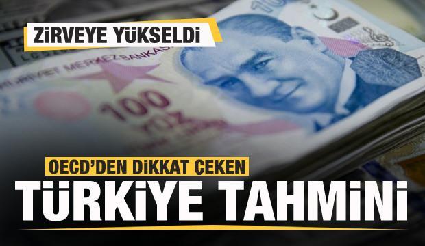 OECD'den Türkiye açıklaması! Zirveye yükseldi