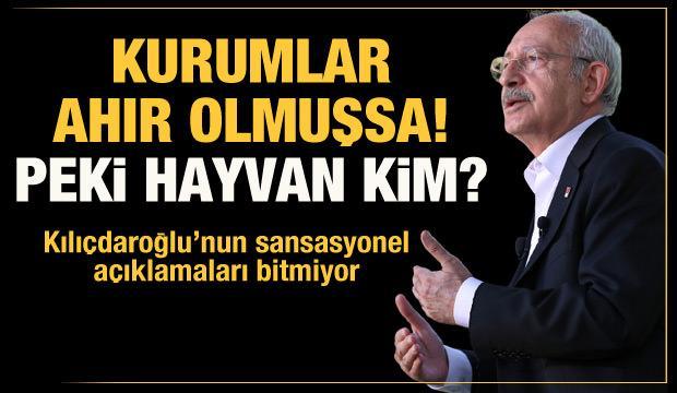 Hasan Öztürk Kılıçdaroğlu'na sordu: Kurumlar ahırsa hayvan kim?