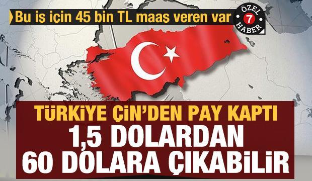 Türkiye Çin'den pay kaptı: 1,5 dolardan 60 dolara çıkabilir! Bu iş için 45 bin TL maaş veren var