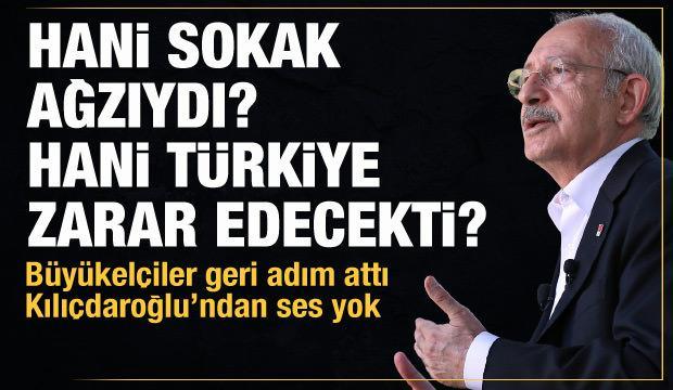 Hani sokak ağzıydı? Hani Türkiye zarar edecekti?