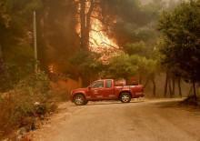 Yunanistan'da büyük orman yangını!